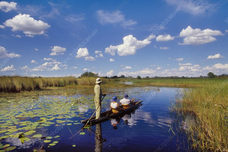 Tourists in dugout canoe, Botswana