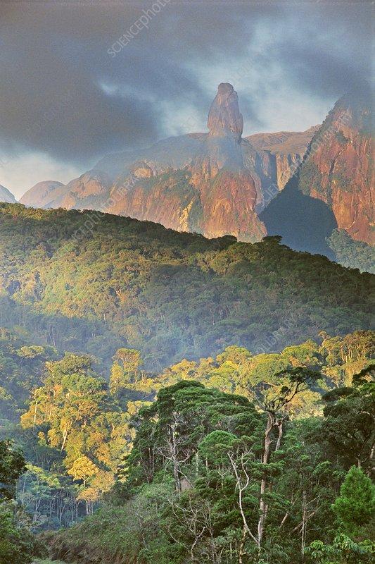 Rainforest and granite mountains, Brazil