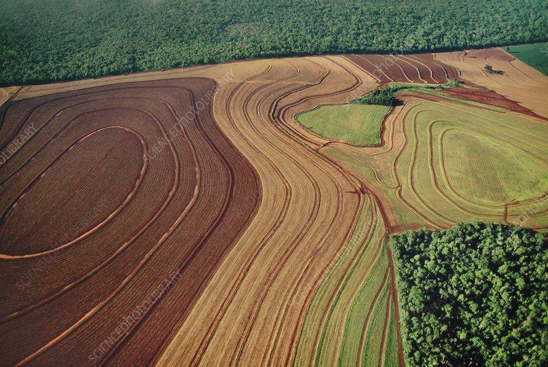 Cropland bordering rainforest, Brazil