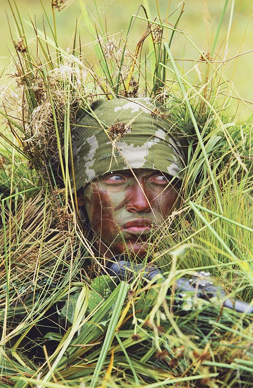 Camouflaged soldier