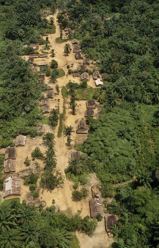 Wamba village, aerial view, Congo