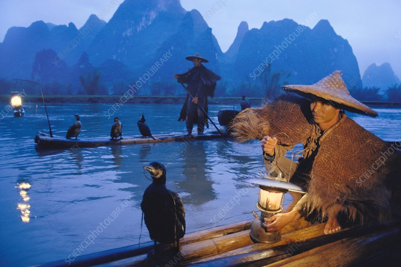 Cormorant fishermen at dusk, China