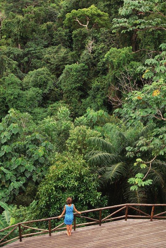Tourist in cloud forest, Costa Rica