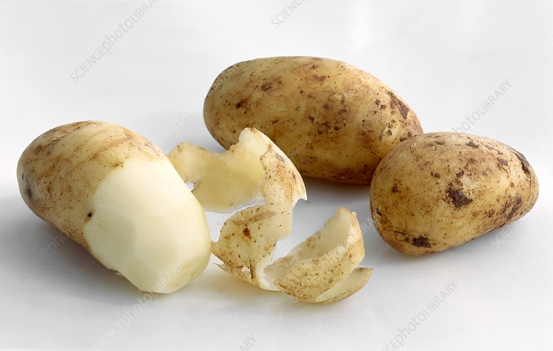 Unpeeled and peeled potatoes