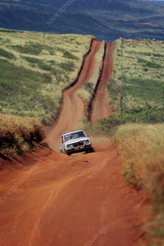 Jeep road on dry side of Molokai, Hawaii
