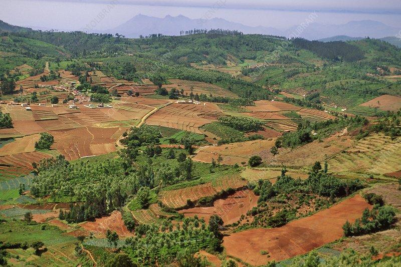 Landscape and deforestation, India