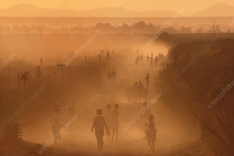 People walk through dust storm