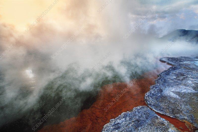 Hot springs, Rotorua, New Zealand