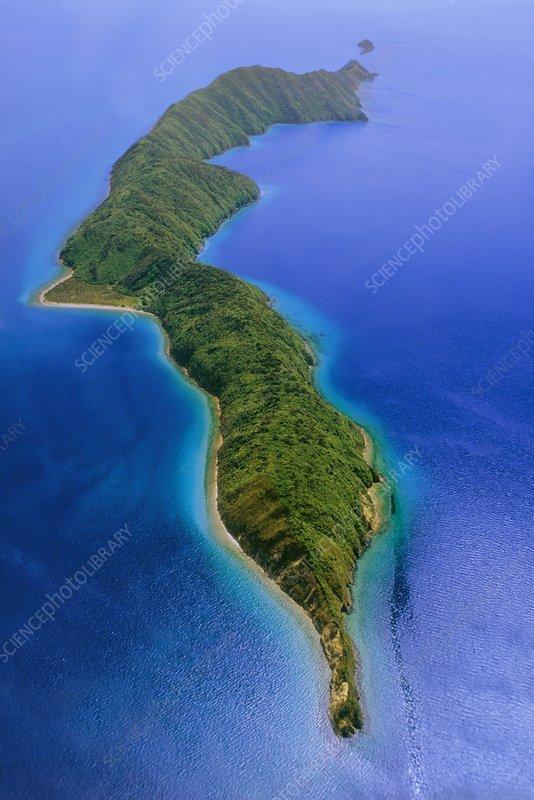 Maud Island, New Zealand