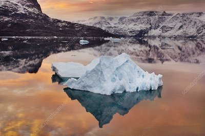 Ice floes at sunrise, Greenland