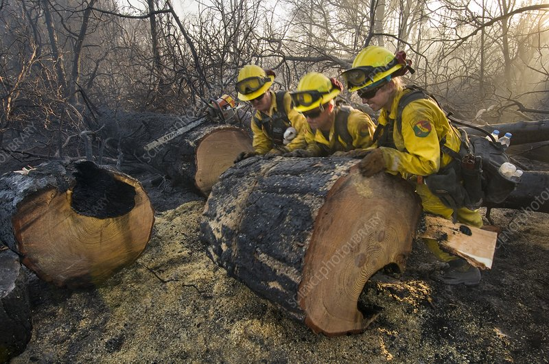 Firefighters pushing log after wildfire