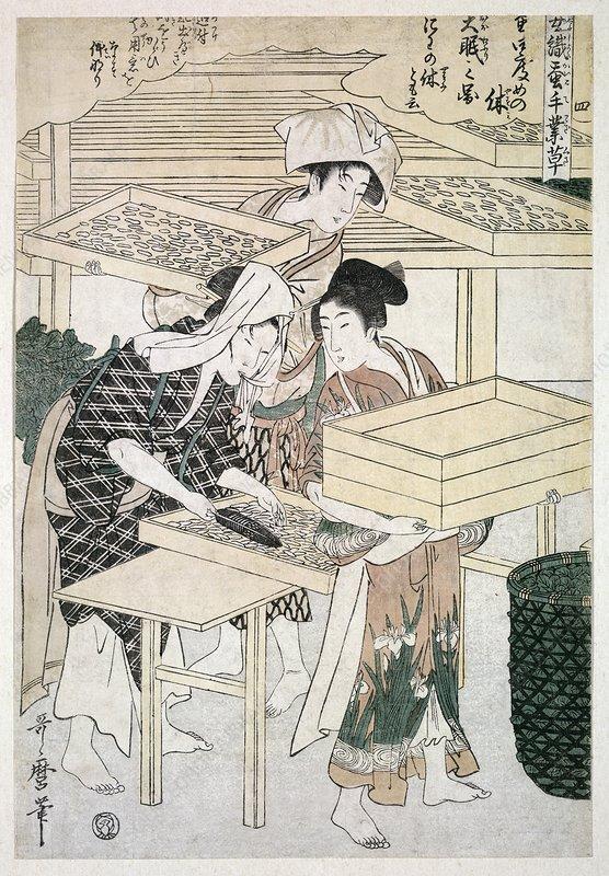 Silk production, Japan, artwork