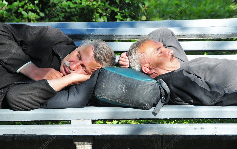 Elderly men sleeping on park bench