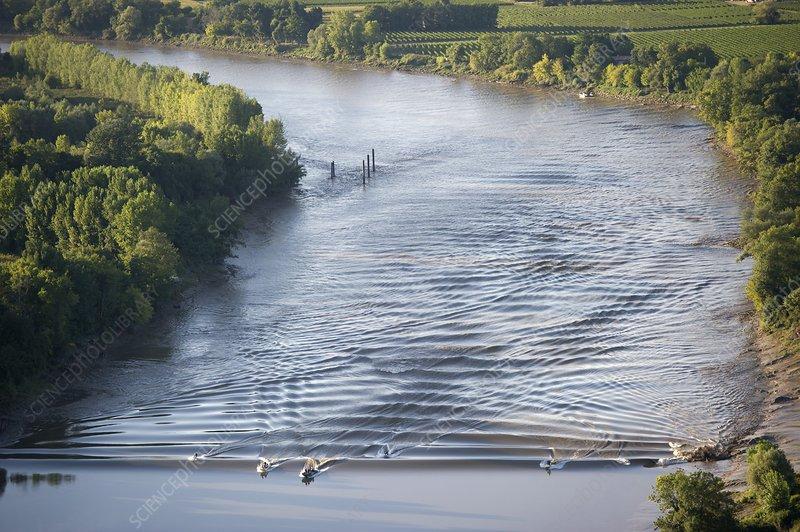 Boats on the Garonne tidal bore