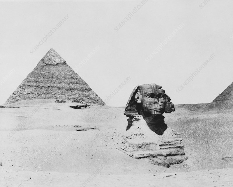 Sphinx and pyramid, Egypt, 1850s - Stock Image - C016/4320 - Science