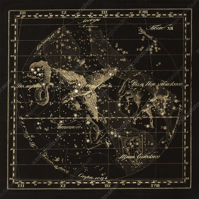 Aqulia constellations, 1829