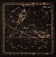 Pisces constellation, 1829
