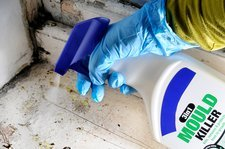 Mould and mildew cleaner