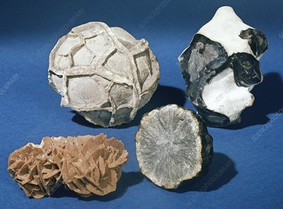 Rock concretions and minerals