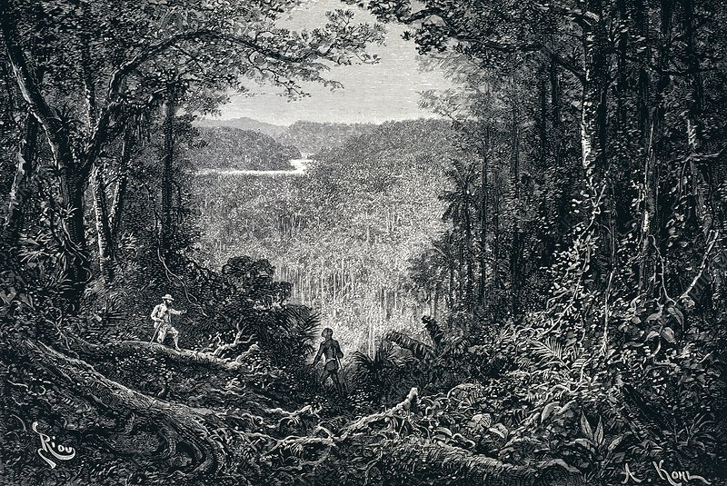 Exploration in Brazil, 19th century