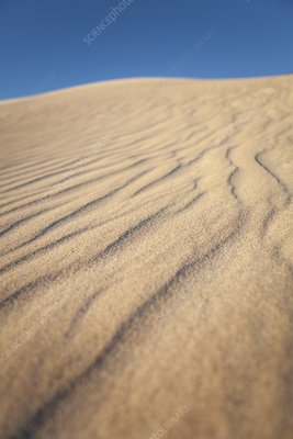 Lancelin sand dune, Western Australia