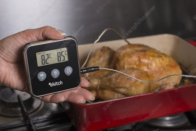 Digital food thermometer and chicken