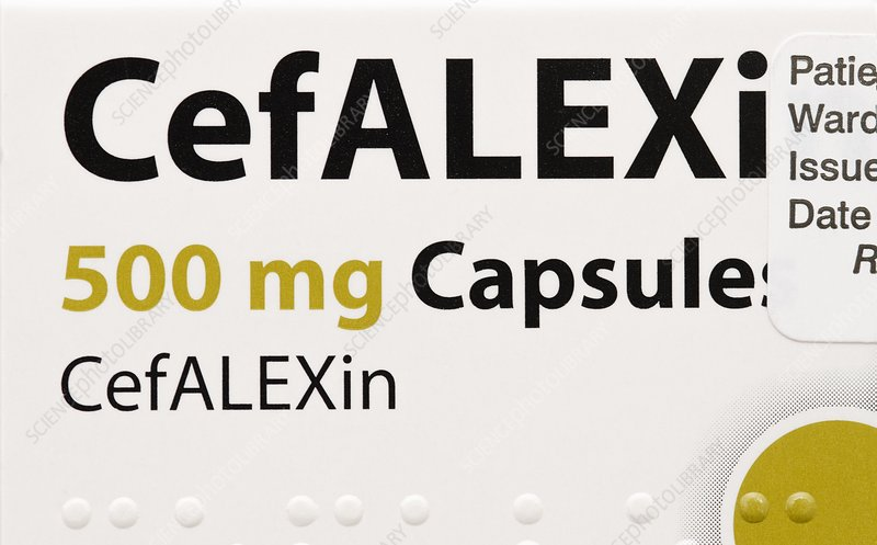 Cefalexin antibiotic drug
