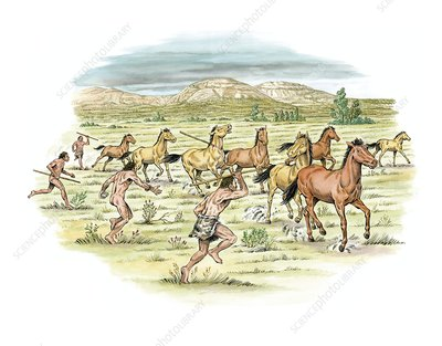 Palaeolithic horse hunting, artwork
