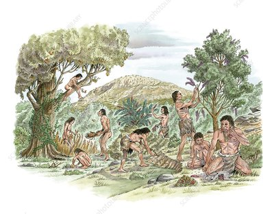 Palaeolithic food gathering, artwork