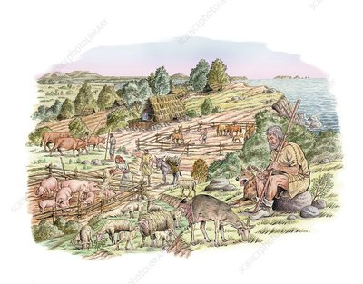 Bronze Age livestock farming, artwork