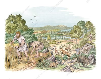 Bronze Age farming and hunting, artwork