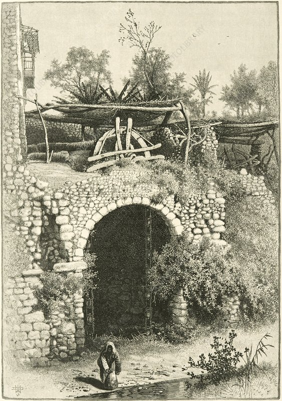 Water wheel in Egypt, 1880s