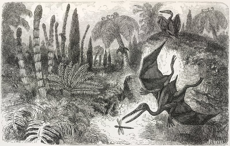 Pterodactyls in a Jurassic landscape