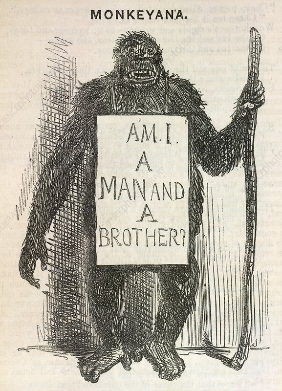 Evolution satire 'Monkeyana', 1861