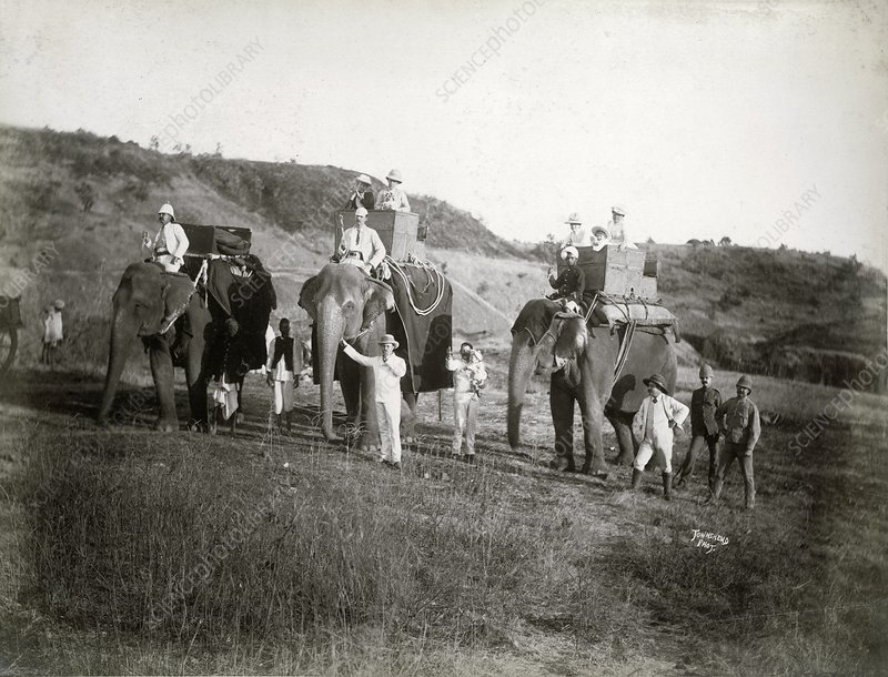 Riding elephants in India, 1890s