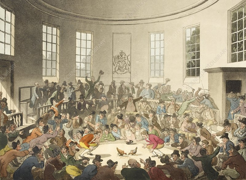 Cockfighting in London, 1808