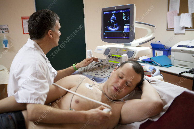 Heart, Sonography