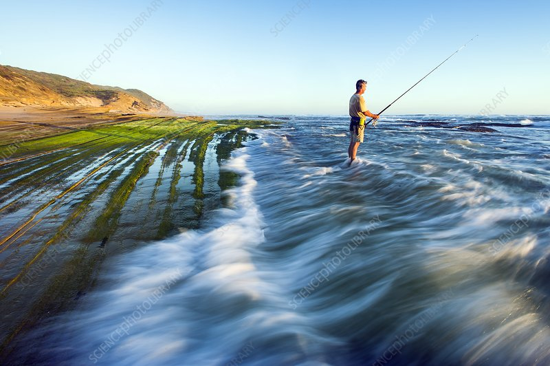 Surf fishing, South Africa