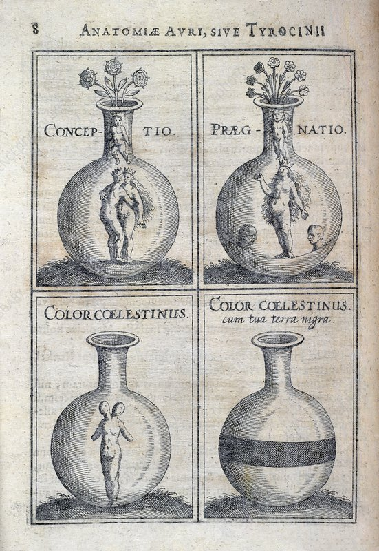 Human development, 17th century artwork