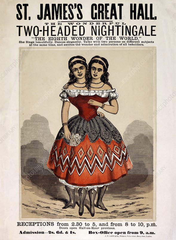 Two-headed nightingale poster