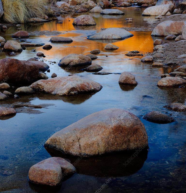 Sunset Reflected in Stream, Arizona