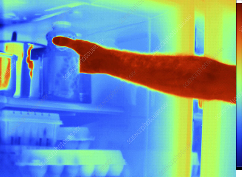 Thermogram of Hand in Refrigerator