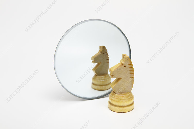 Reflection in Convex Mirror, 2 of 4