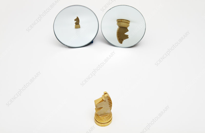 Reflections In Curved Mirrors 3 Of 4 Stock Image C017 4067 Science Photo Library