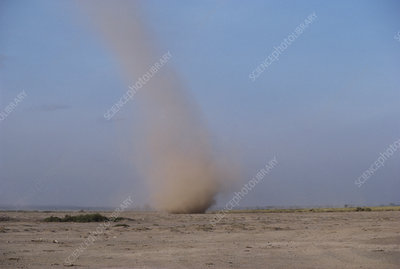Dust Devil Whirl Wind