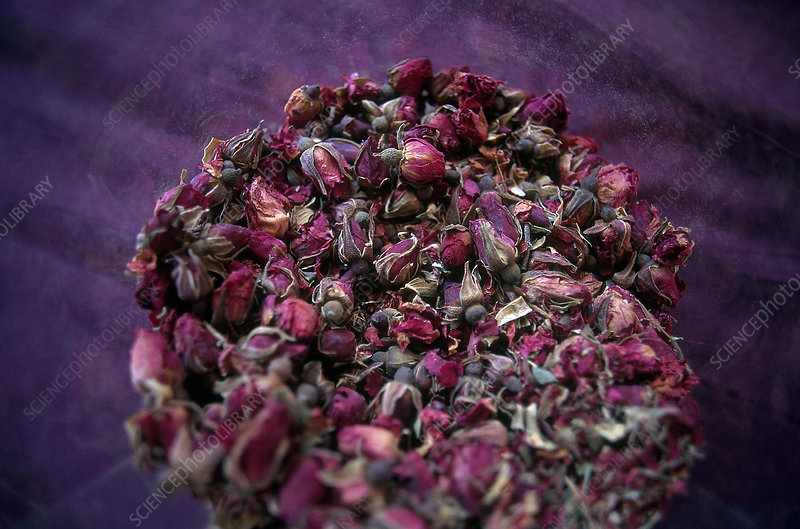 Rose Buds, Chinese Herb
