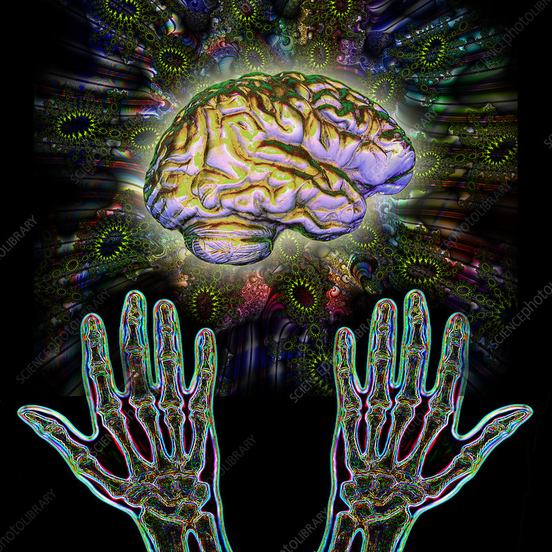 Brain Hands Energy