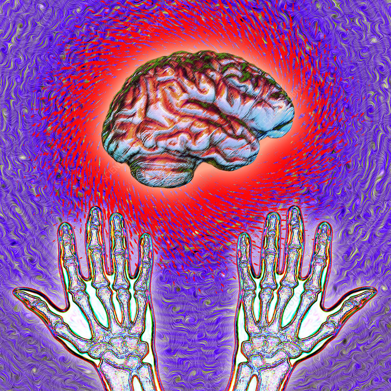 Brain and Hands Energy