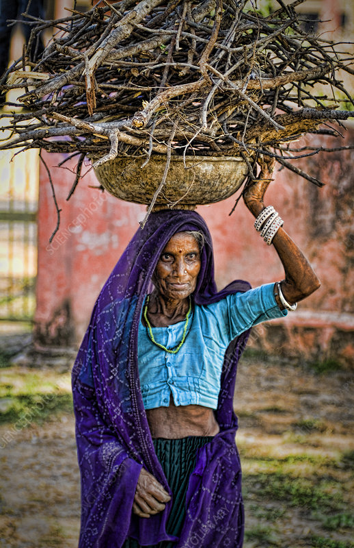Indian Woman Carrying Firewood