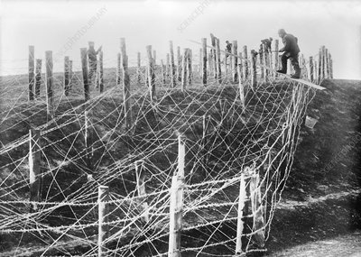 Barbed wire trench defences, World War I
